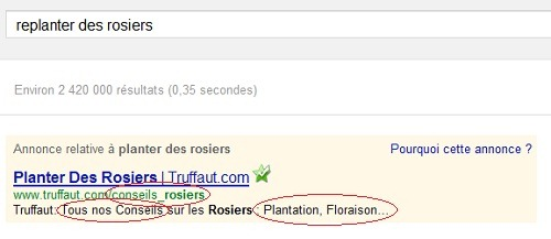 annonce-rosiers